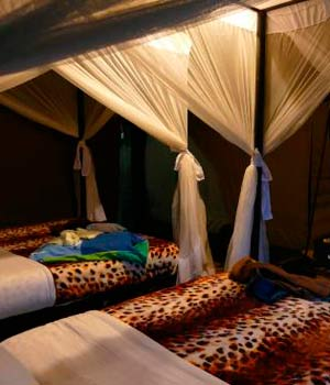 Facilities Serengeti Heritage camp